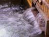 天然温泉.png