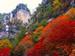 昇仙峡.png
